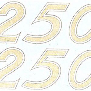 Coppia adesivi pvc per cilindrata 250