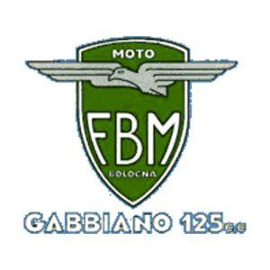 Decalcomania trasferibile a secco per moto FBM - Gabbiano 125