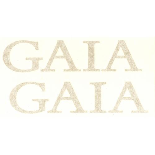 Coppia di adesivi in pvc per serbatoio moto Gaia