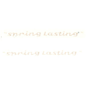 coppia adesivi in pvc per MOTOBI Spring Lasting